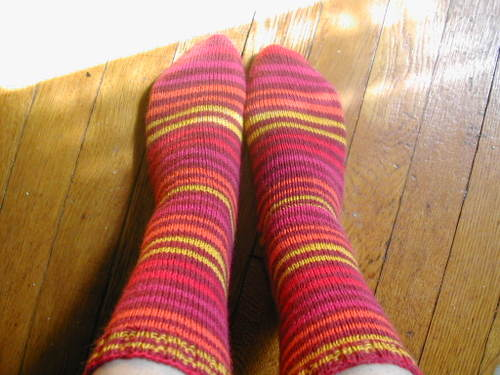 Stripey Regia socks